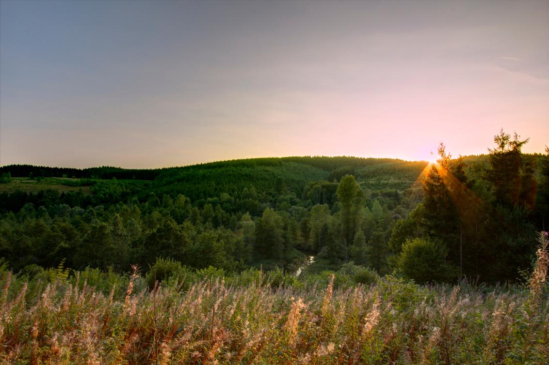 Ardennen2 - Strainchamps Ardennen zonsondergang - foto door lodexiv op 22-08-2018 - deze foto bevat: zon, natuur, zonsondergang, bomen