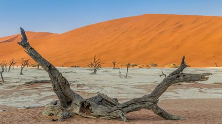 Deadvlei anders - Foto gemaakt in Namibië in de rode duinen van de Deadvlei. Meestal zie je een staande boom tegen de rode duinen aan gefotografeerd maar ik vond deze  - foto door peter-grobbee op 07-01-2018 - deze foto bevat: landschap, duinen, bomen, zand, bergen, meer, namibie, woestijn, zandduinen, droog, dode bomen, rode duinen
