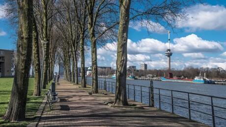 Wandelen in Rotterdam