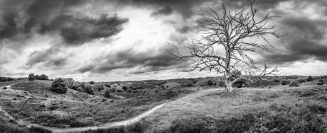 Panorama Posbank black&white