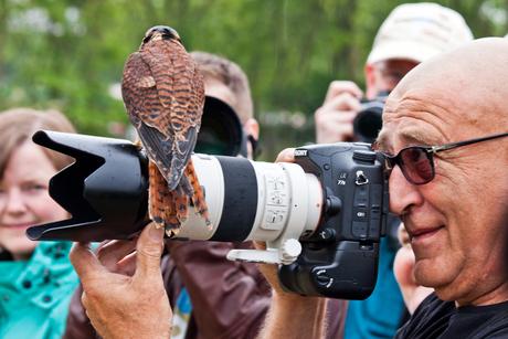 Kijk eens naar het vogeltje!