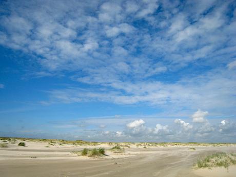 Texels landschap 1