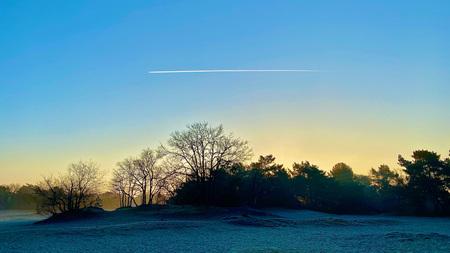 Vroege wandeling - Niet alleen ik, maar ook het vliegtuig was vroeg onderweg... - foto door gwennie op 04-03-2021 - deze foto bevat: lucht, zon, boom, lente, natuur, licht, landschap, bos, tegenlicht, zonsopkomst, voorjaar, nederland