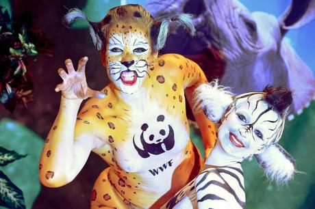 WWF Representatives