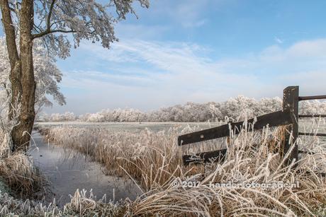 winterlandschap nabij Meppel