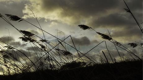 wandelen in de WW (wind en wolken)