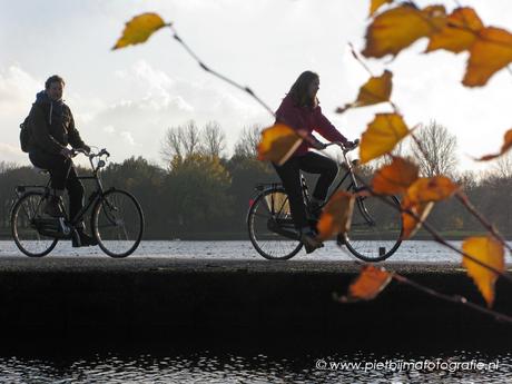 Hoornse plas Groningen