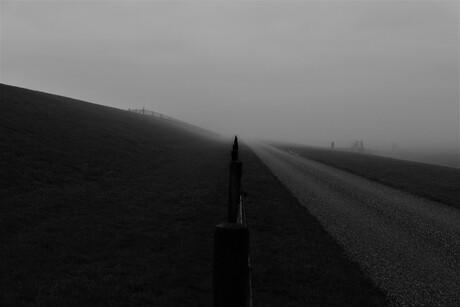 Mistig landschap