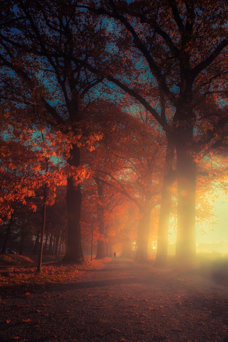 Walking in a dream