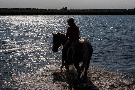 Samen plezier aan het water aan het eind van de middag