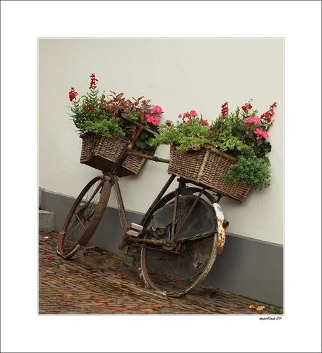 op een ouwe fiets...