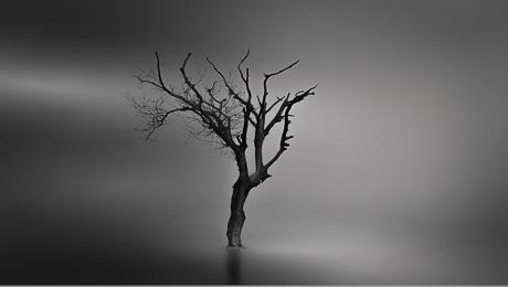 Drowned landscape III
