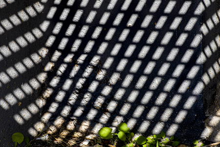 In de put - Tijdens een stadswandeling viel mijn oog op het patroon dat ontstond dat gevormd werd door een rek boven een soort put. De plantjes met hun ronde vor - foto door ConniePosthuma op 05-05-2021 - locatie: Amsterdam, Nederland - deze foto bevat: abstract, contrast, beton, plant, straat, put, gebouw, mesh, patroon, lettertype, rooster, metaal, tinten en schakeringen, rechthoek, dak, elektrisch blauw