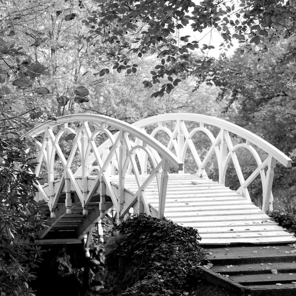 Brug - De brug op verscihllende manieren weer geven. - foto door Tasja op 13-04-2021 - deze foto bevat: engeltje's fotografie, water, fabriek, gebonden boogbrug, afdeling, vegetatie, zwart en wit, hout, boom, natuurlijk landschap, boogbrug
