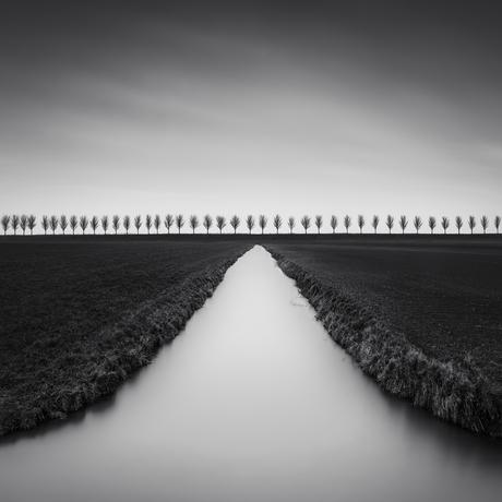 Dutch polder - The Beemster