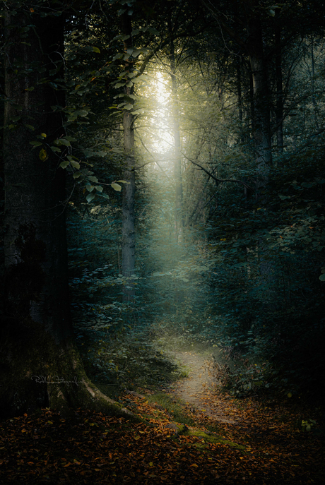 Walk the ethereal path, worry less.
