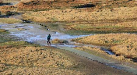 Eenzame fietser - De Slufter  Texel - foto door joselokzandvliet op 21-04-2021 - locatie: Texel, Nederland - deze foto bevat: water, fiets, fabriek, lichaam van water, natuurlijk landschap, fietsstuur, grasland, gras, gewoon, landschap