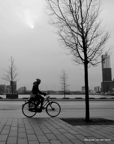 Eenzame fietser..
