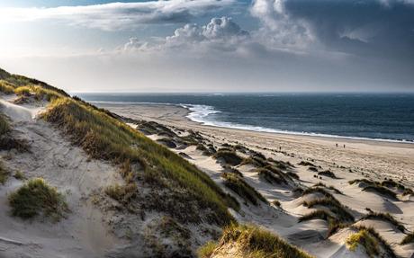 Duin en strand