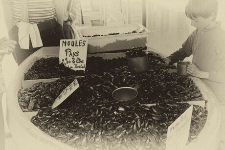 Moules for sale