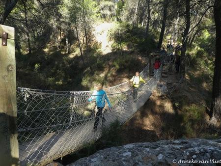 Wandelen -  in de Sierra Espuña. - foto door AnnekevanVliet op 12-04-2021 - locatie: El Berro, Murcia, Spanje - deze foto bevat: fabriek, plant gemeenschap, sportuitrusting, boom, hout, afdeling, landschap, helling, hek, recreatie