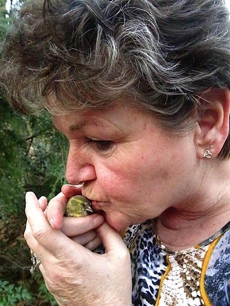 Vogelfluisteraar redt jong vinkje