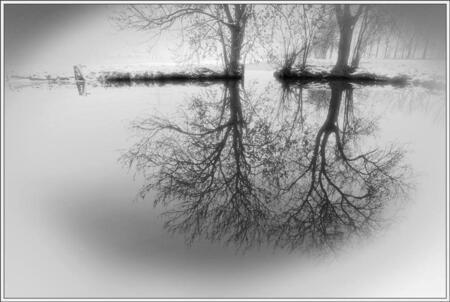 'Hangende bomen'... - Zag dit stukje natuur niet zover van mijn woonplaats. Het water was ongerimpeld en daardoor weerspiegelde de bomen heel goed. Omdat er overal een laa - foto door Foto_Marleen op 08-02-2009 - deze foto bevat: water, natuur, landschap, bomen, weerspiegeling, foto-marleen
