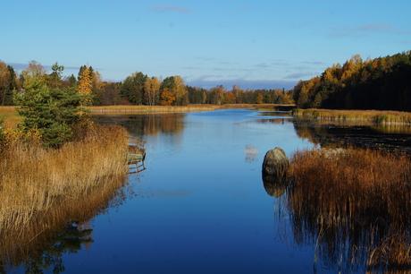 Fins herfst landschap