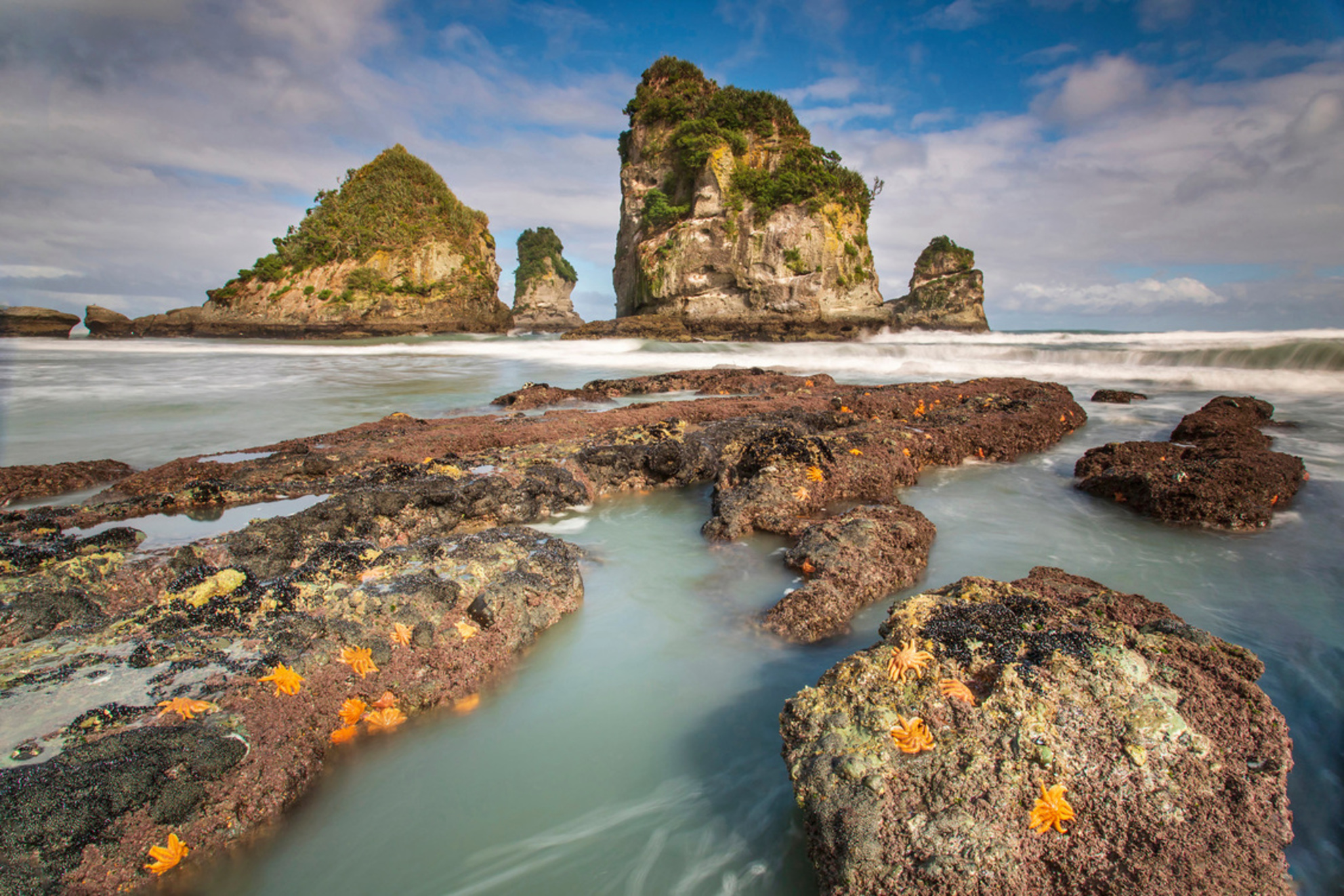 Mutukiekie beach - Mutukiekie beach aan de ruige westkust van Nieuw Zeelands zuidereiland is een bijzonder mooi strand dat alleen rondom laagtij bereikbaar is. - foto door antwan op 25-02-2021 - deze foto bevat: natuur, landschap, kust