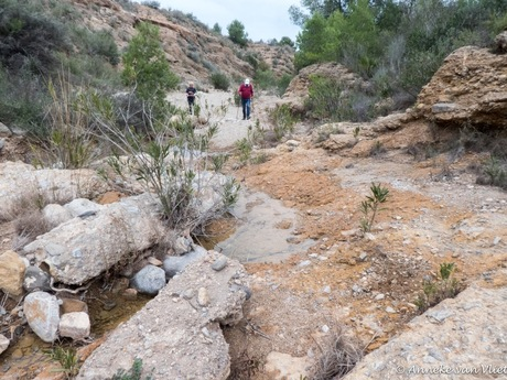 Agua de Galifa