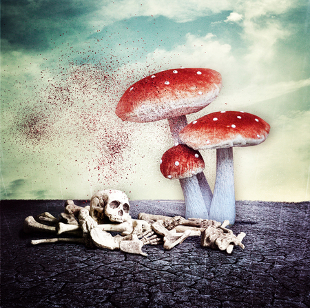 FungusFear . . . - C4U on [url=https://www.facebook.com/pages/C4U/454353724628543?ref=hl]Facebook[/url] [url=http://chiandra4u.deviantart.com]DeviantART[/url] - foto door ChIandra4U op 28-01-2014 - deze foto bevat: donker, paddestoelen, ma, bewerking, dood, fotobewerking, oorlog, duister, photo, manipulatie, kwaad, nachtmerrie, manipulation, chiandra4u, C4U, manipulate, BUwk3-4-2014