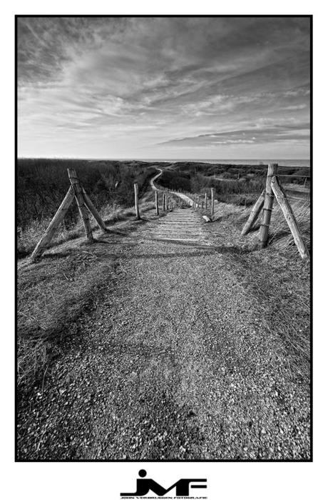 Path to the horizon