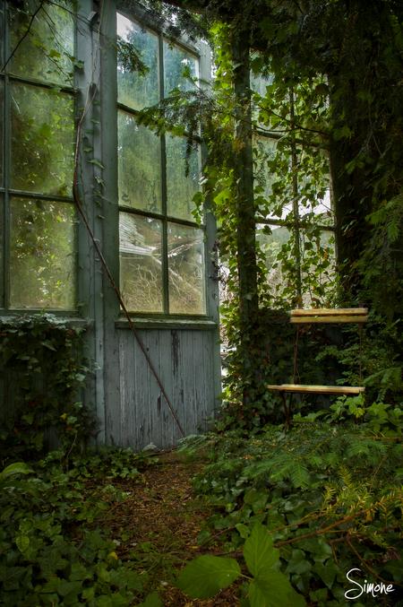 Atelier Decor - Dit prachtige leegstaande Atelier in België vormt een sprookjesachtig tafereel. - foto door frostwood op 26-06-2013 - deze foto bevat: urbex, atelier decor