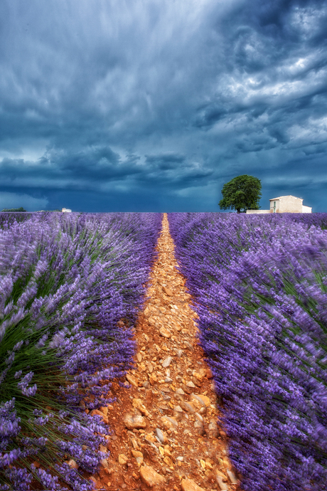 storm in provence