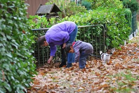 herfstbeeld - mijn zoontje en schoonmoeder rapen kastanjes - foto door royeversen op 19-11-2011 - deze foto bevat: herfst, zoon, schoonmoeder, kastanjes
