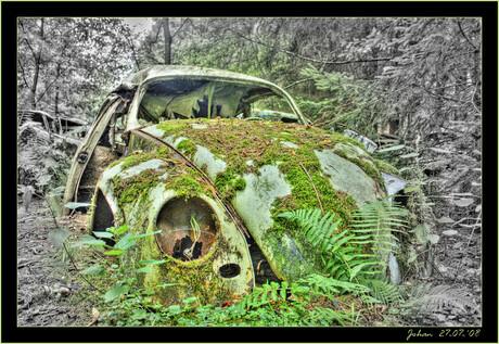Oude-Beetle