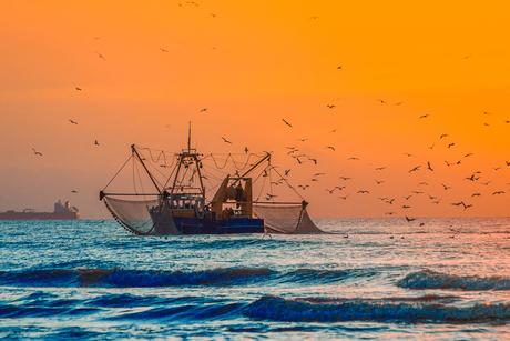 vissers boot
