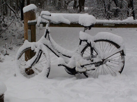 de eenzame fiets(er)...