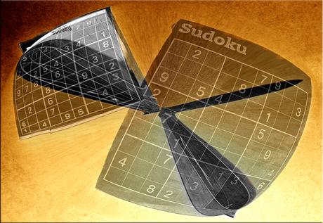 Het Sudoku verleden.........