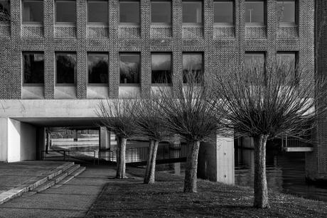 architectuur maastricht 047 mono