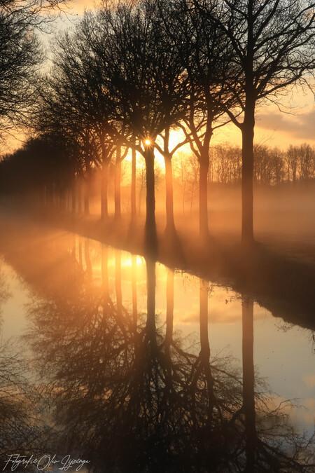 nature fairy tale - zonsopgang - foto door olav_zoom op 15-04-2021 - locatie: Friesland, Nederland - deze foto bevat: #bomen, #zonsopgang, #water, #zon, #lente, #mist, water, atmosfeer, lucht, fabriek, natuurlijk landschap, natuurlijke omgeving, blad, nagloeien, afdeling, boom
