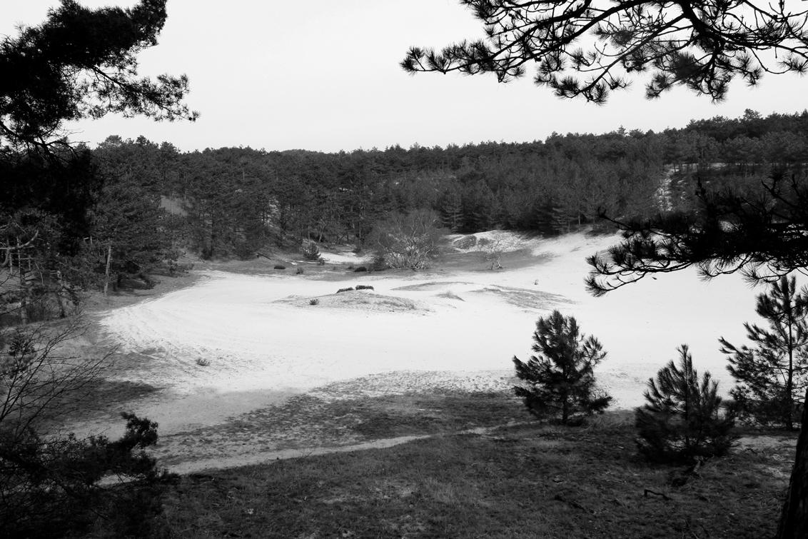 Duinen zwart wit. - Met Welmanstudio in de Schoorlse duinen. Opdracht: zwart wit. - foto door yvonnevandermeer op 28-03-2013 - deze foto bevat: duinen, schoorl, zwart wit, roet route