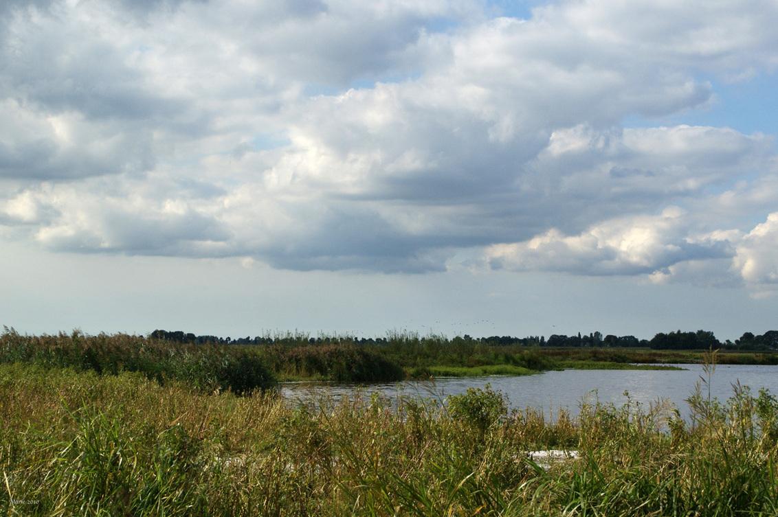 Groene Jonker - Een natuurgebied te noorden van Nieuwkoop in het Groene Hart. Foto is vorig jaar zomer gemaakt. - foto door Marie_zoom op 17-02-2011 - deze foto bevat: natuur, landschap, groene jonker