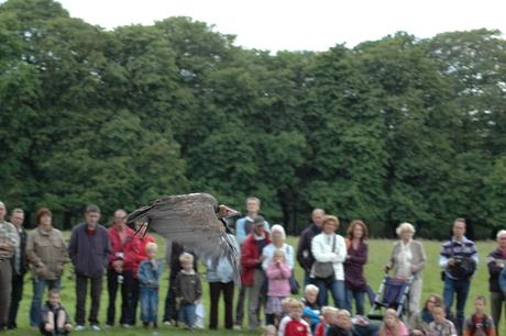 Demo Valkenhof