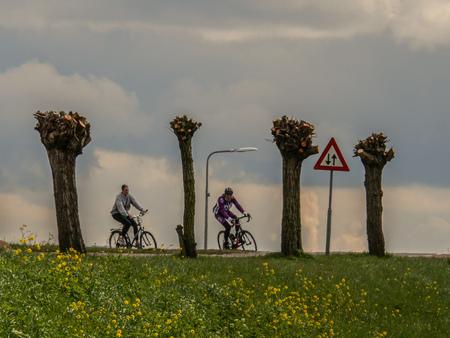 Tussen de bomen - Fietsen in de natuur en af en toe een foto maken. - foto door convust op 15-04-2021 - locatie: 2635 Den Hoorn, Nederland - deze foto bevat: bomen, fietsen, natuur, bloemen, lucht, verkeersbord, wolk, wiel, fiets, bloem, lucht, band, fabriek, fietswiel, fietsen - uitrusting en benodigdheden, fietsstuur