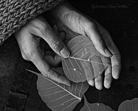 Hands of an Autumn Soul