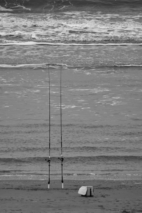 Lonely Rods