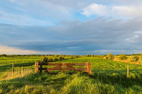 De laatste zonnestralen op de polder