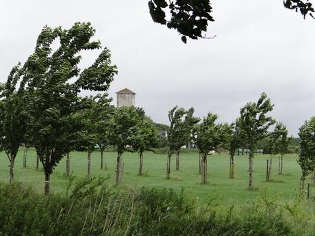 Watertoren Cothen