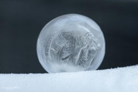 Bevroren zeepbel - - - foto door LGphotography op 11-02-2021 - deze foto bevat: macro, natuur, sneeuw, winter, zeepbel, nederland